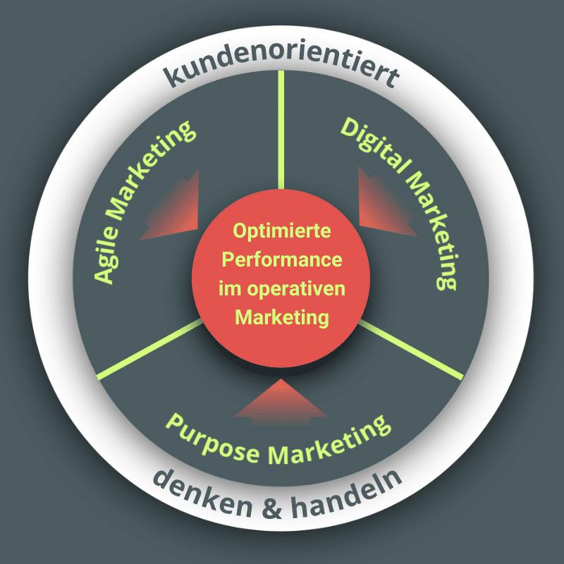 m.pulse Performance Framework operatives Marketing