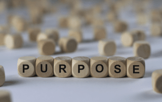 Purpose Begriffsdefinition